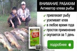 Активатор клева fishhungry купить