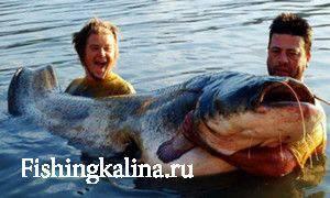 Как ловить рыбу советы