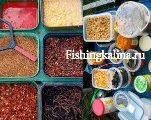 Насадки, наживки для рыбалки ловли карпа сазана