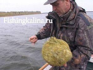 Набитая прикормкой сетчатая кормушка для ловли снастью кольцо