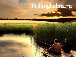 Как клев рыбы зависит от погоды
