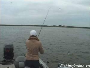 Женская на Волге рыбалка