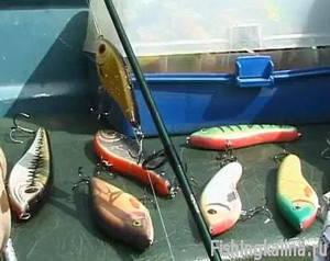 Рыбалка на джеркбейты