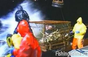 Как на Аляске ловят крабов