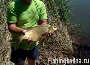 Рыбалка на леща с удочкой