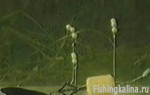 оснастка технопланктона видео