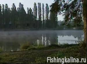Погода для ловли рыбы