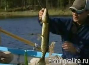 Ловля рыбы в Швеции