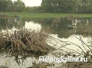 Рыбалка в коряжнике на щуку осенью
