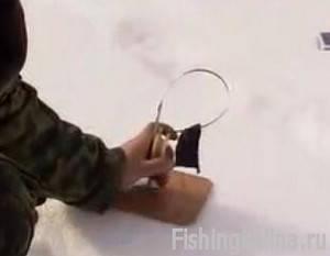 Ловля окуня и щуки на жерлицы в Разнежье