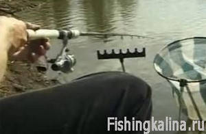 Ловля фидером