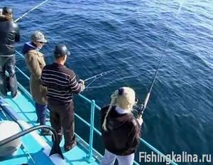 Морская рыбалка по ловле ставриды на Черном море