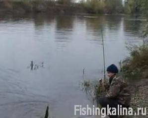 Подмосковная рыбалка