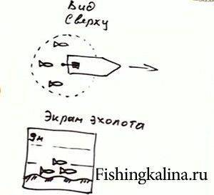 Показания на экране эхолота на рыбалке