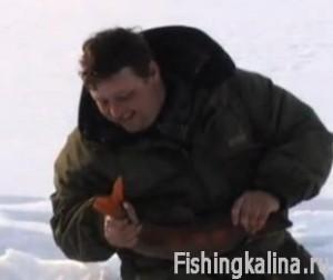 Ловля со льда омуля и сига