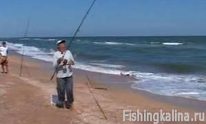 Увлекательная рыбалка на пеленгаса в Азовском море