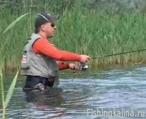 Ловля хищной рыбы твичингом