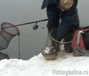 Рыбалка зимним фидером