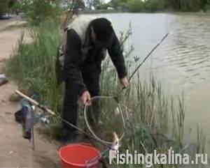 Рыбалка на платном пруду