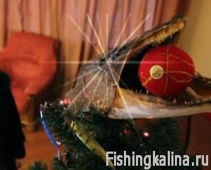 Видеоприложение за январь «Рыбачьте с нами №29»