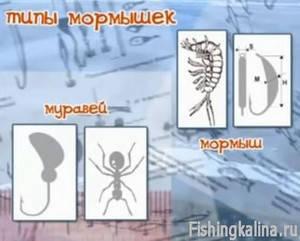 Типы мормышек - муравей и мормыш