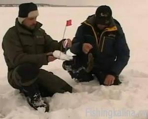 Ловля налима зимой жерлицами