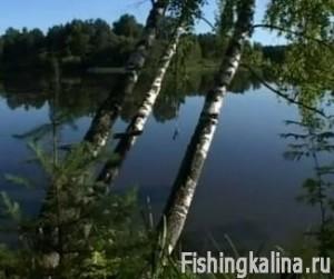 Отдых и рыбалка на Московском море