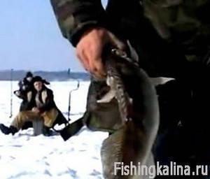 Рыбалка на Московском море в Тверской области