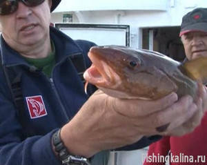Спиннинговая рыбалка в Норвегии