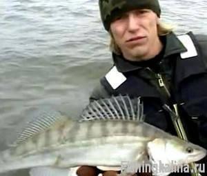 Рыбалка на судака а Астраханской области