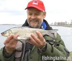 Рыбалка на озере Касарги - ловля сига