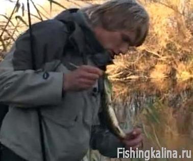 Рыбалка на реке Чир в Волгоградской области