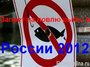 Запрет на рыбную ловлю в 2012 году в России. Сроки запрета 2012 по регионам