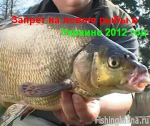 Запрет на рыбную ловлю в 2012 году в Украине. Сроки по областям