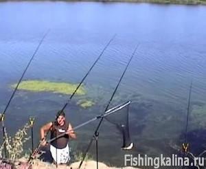 Рыбалка на реке фидерами