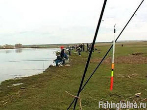 Ловля на удочку с поплавком летом