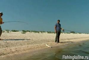 Ловля пеленгаса в лиманах Азовского моря
