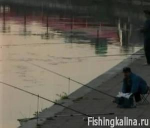 Ловля рыбы на фидер с набережной на реке Днепр в Киеве