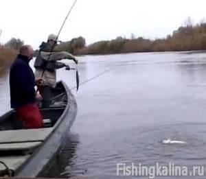 Рыбалка в дельте Волги настоящий рыболовный рай