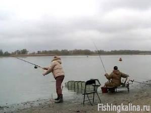 Ловля на фидер - рыбалка на Дону