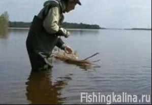 Рыбалка на живца - рыболовная снасть шмат