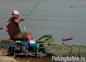 Ловля рыбы фидером на Истринском водохранилище