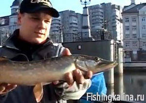 Отдых и рыбалка в Калининграде