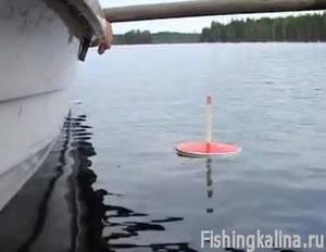 Рыбалка в Карелии на кружки