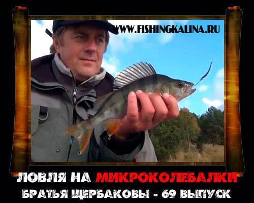 Ловля с Щербаковыми на микроколебалки