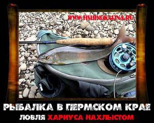 Ловля хариуса на рыбалке в Пермском крае