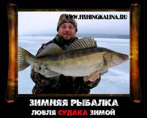 Ловля судака зимой со льда