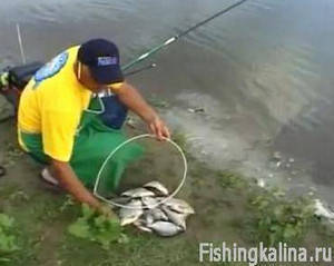 Поплавочная ловля на реке