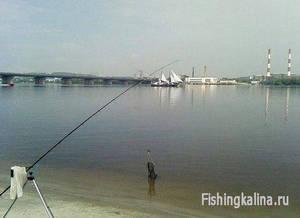 Ловля на фидер рыбы