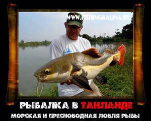 Ловля рыбы в Таиланде